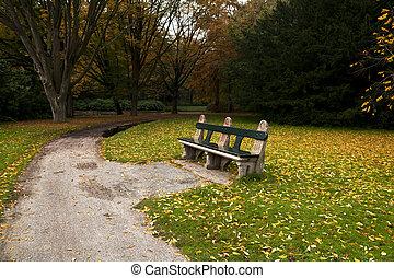 cómodo, banco, en, otoño, parque