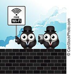 cômico, livre, wifi