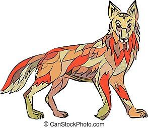 côté, coyote, isolé, dessin