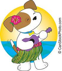 CÙte, junger Hund,  Hawaii