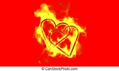 cœurs, jour, brûlé, deux