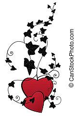 cœurs, lierre