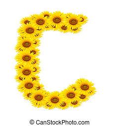 c, alfabeto, girassol
