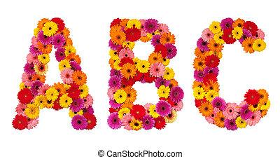 c, alfabeto, isolado, -, letra, flor, b, branca