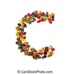C, Dried flower alphabet isolated on white background
