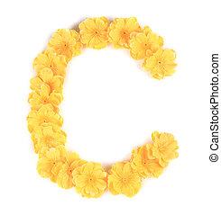 c, flor, alphabet., letra