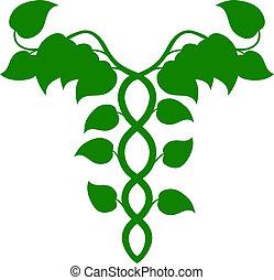 c, holístico, adn, caduceus, medicina, ou