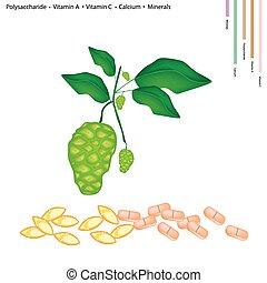 c, morinda, vitamin, noni, a, kalzium, citrifolia, oder