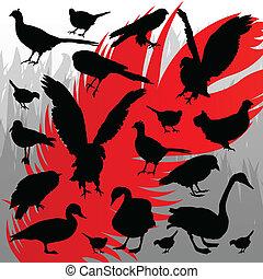 caça, ilustração, silhuetas, vetorial, floresta, fundo, pássaro
