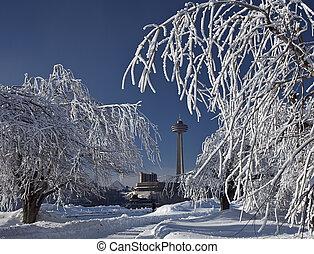 caídas de niagara, hielo rime, árboles, 2