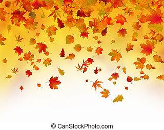 caído, outono sai, fundo