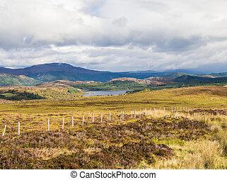 cañada, grande, ness de lago, más, escocés, tierras altas, o, vista