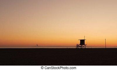 ca, tour, plage, iconique, sombre, coucher soleil, retro, ...