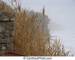 Ca?as fotografiadas sobre acantilado de fondo, que transmite la nostalgia del invierno. Tomada en Conil, C?diz, Andaluc?a, Espa?a.