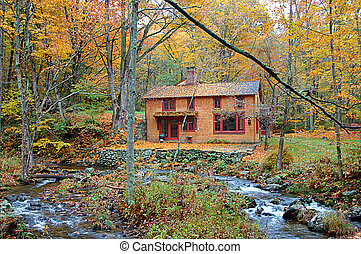 cabaña, bosque, otoño