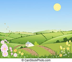 cabaña, país, primavera