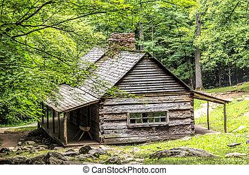 cabañade troncos, en, el, bosque