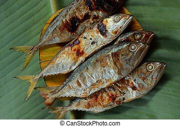 caballa, leaf., plátano