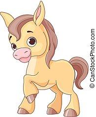 caballo bebé