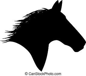 caballo, blanco, cabeza, negro