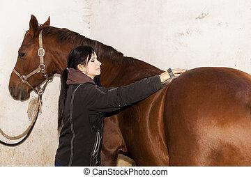 caballo, ecuestre, cardadura
