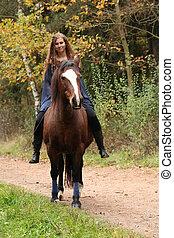 caballo, equipo, sin, bastante, equitación, niña,...