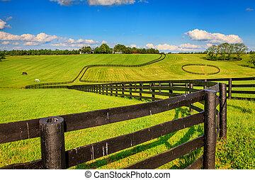 caballo, granja, cercas