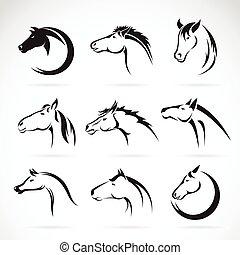 caballo, grupo, cabeza, fondo., vector, diseño, blanco