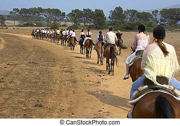 caballo, grupo, paseo