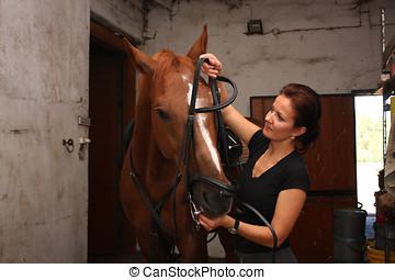 caballo marrón, mujer, morena, poniendo, brida