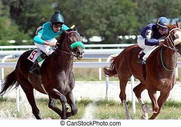 caballo, race.
