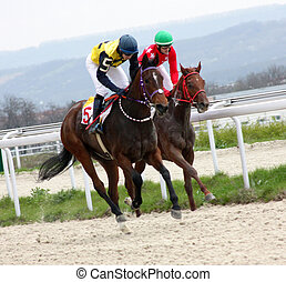 caballo, racing.