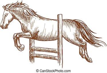 caballo salvaje, el saltar encima, barrera