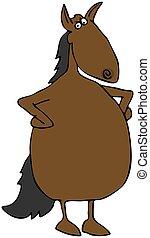 caballo, trastorno