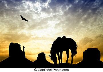 caballo, valle, monumento