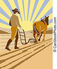 caballo, viejo, arada, granjero