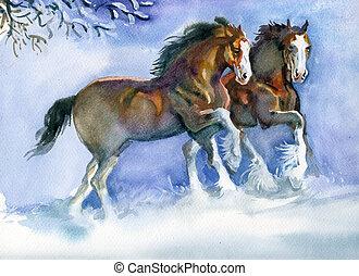 caballos, corriente, invierno