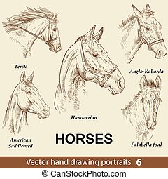 caballos, dibujo, 6, conjunto de mano