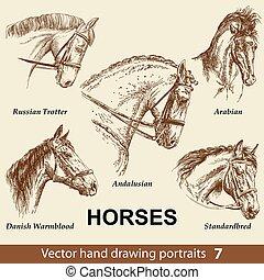 caballos, dibujo, 7, conjunto de mano