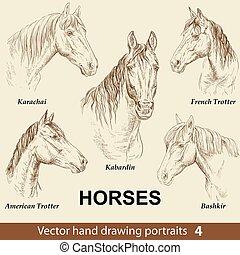 caballos, dibujo, conjunto de mano, 4