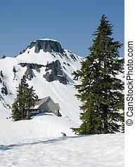 cabana, em, inverno, montanha, selva