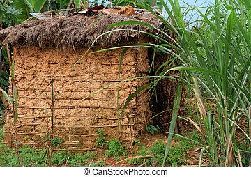 cabana, lama, lar