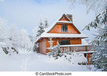 cabana, montanha, inverno