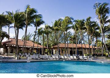 cabanas, piscina, palmas