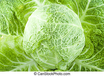 a piece of green cabbage - vegetable - detail