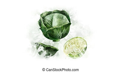 Cabbage and its parts on the alpha channel - Alpha channel...