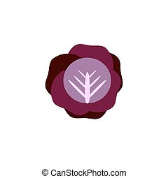 cabbage color icon flat vector vegetable