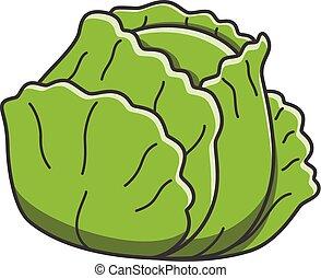 Cabbage doodle illustration