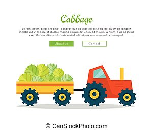 Cabbage Farm Web Vector Banner in Flat Design.