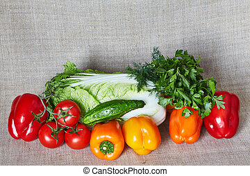 Cabbage, fennel, parsley, tomato, paprika, cucumber on a gray canvas